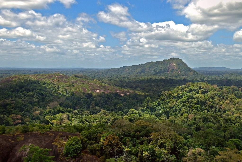 peruaanse jungle