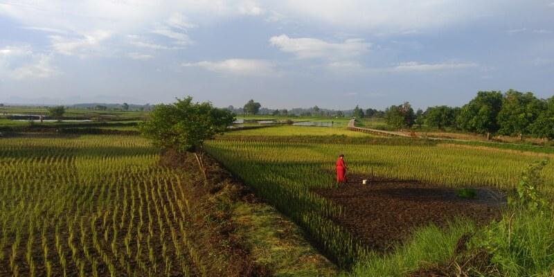 Rondreis op Kalimantan