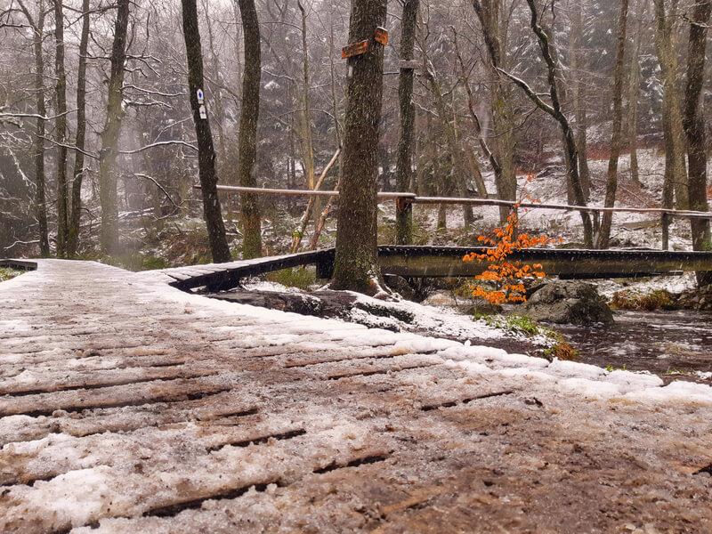 mooiste wandelroutes in de Ardennen